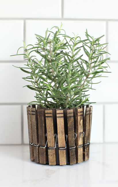 clothespinplanters_rosemary1